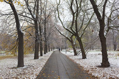 Parque nevado en Varsovia Foto de archivo libre de regalías