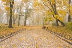 Parque nevoento de Mariinsky fotos de stock royalty free