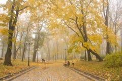 Parque nevoento de Mariinsky fotos de stock