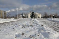 Parque no inverno Fotos de Stock Royalty Free