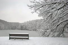 Parque no inverno fotografia de stock royalty free