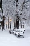 Parque no inverno e na lâmpada Imagem de Stock Royalty Free