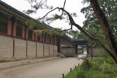 Parque no palácio de Changdeokgung Foto de Stock Royalty Free