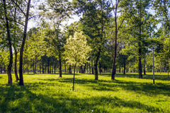 Parque no Zagreb imagem de stock royalty free