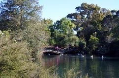 Parque ocidental das molas em Auckland Nova Zelândia Fotos de Stock