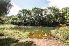 Parque Olhos D'agua Stock Photos
