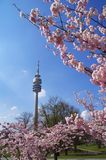 Parque olímpico de Munich Imágenes de archivo libres de regalías