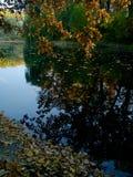 Parque ozy e pitoresco Nyvky do ¡ de Ð em Kyiv fotografia de stock royalty free