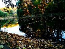 Parque ozy e pitoresco Nyvky do ¡ de Ð em Kyiv fotografia de stock