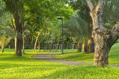 Parque público de Bangkok Foto de archivo libre de regalías