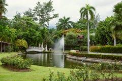 Parque público de Nong Buak Haad em Chiang Mai City Imagens de Stock