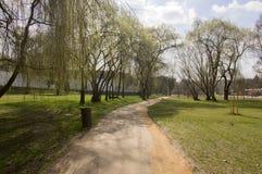Parque público en la primavera temprana, vuelta del principio de la naturaleza al verde Imagenes de archivo