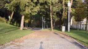 Parque público no outono video estoque