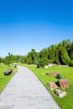 Parque pacífico por la mañana Imagen de archivo