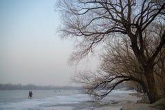 Parque Pekín del invierno Imagen de archivo libre de regalías