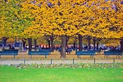 Parque perto de Notre Dame Foto de Stock Royalty Free