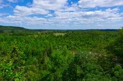 Parque provincial dos mono penhascos Fotos de Stock Royalty Free