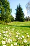 Parque Pruhonice Fotografía de archivo