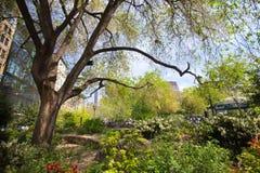 Parque quadrado NYC da união foto de stock
