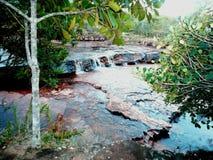 Parque quebrado de gran sabana el Amazonas Venezuela de la losa roja imagen de archivo
