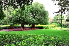 Parque Ramat Hanadiv, jardins memoráveis de Baron Edmond de Rothschild, Zichron Yaakov, Israel fotografia de stock