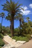 Parque Ramat Hanadiv, Zichron Yaakov, Israel Fotografia de Stock Royalty Free