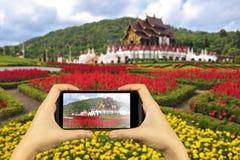 parque real da flora em Chiangmai, Tailândia Tomando a foto em p esperto imagens de stock royalty free