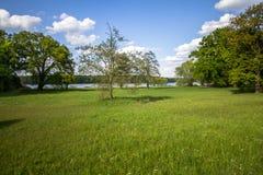 Parque real de Sanssouci en Potsdam, Alemania Imágenes de archivo libres de regalías