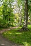 Parque real de Sanssouci en Potsdam, Alemania Fotos de archivo libres de regalías