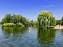 Parque regente del ` s, Londres, Inglaterra fotografía de archivo