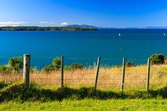 Parque regional de Shakespear, región de Auckland, Nueva Zelanda Imagen de archivo libre de regalías