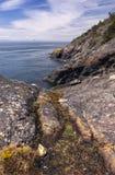Parque regional do leste de Sooke, console de Vancôver, BC Foto de Stock Royalty Free