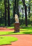 Parque renovado do jardim do verão em St Petersburg fotos de stock