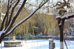 Parque rojo de la montaña Imagen de archivo libre de regalías