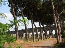 Parque romano da cidade com um trajeto seco da terra dos pinos mediterannean com atrás de um aqueduc antigo Fórum romano do Th Fotografia de Stock Royalty Free