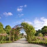 Parque Rose Garden Summer de Nueva Zelanda Christchurch Hagley Imagen de archivo libre de regalías