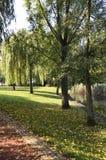 Parque rural en un día del otoño Foto de archivo libre de regalías