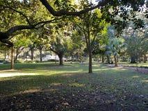 Parque Savannah Georgia de Forsyth fotos de archivo
