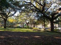 Parque Savannah Georgia de Forsyth imagen de archivo libre de regalías
