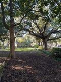 Parque Savannah Georgia de Forsyth foto de archivo libre de regalías