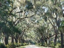 Parque Savannah Georgia de Forsyth fotos de archivo libres de regalías