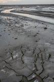 Parque seco de la protección del lago earth del paisaje Las grietas texturizan el negro blanco Nadie foto Cuadro vertical fotos de archivo libres de regalías