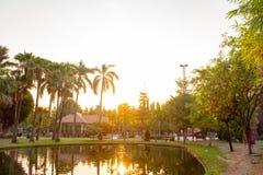 Parque sereno en centro de ciudad durante tiempo de la salida del sol foto de archivo