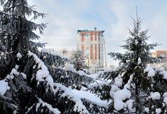 Parque siberiano de la ciudad del invierno Fotografía de archivo libre de regalías
