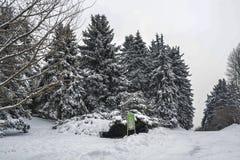 Parque sitiado por la nieve Foto de archivo
