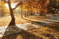 Parque solar Imagens de Stock Royalty Free