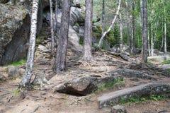 Parque Stolby da paisagem, perto de Krasnoyarsk Foto de Stock