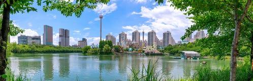 Parque temático alrededor del lago Seokchon, una atracción turística importante de la diversión de Lotte World en Seul, Corea del fotos de archivo