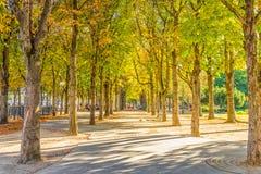 Parque tranquilo cerca de los campeones Elysess Imagenes de archivo