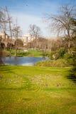 Parque tranquilo con una charca y los wildflowers Fotos de archivo libres de regalías